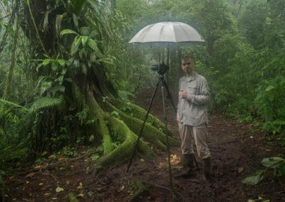 Costa Rica, Tropischer Regenwald, Regenwald, Kinderregenwald, Pocosol Station,
